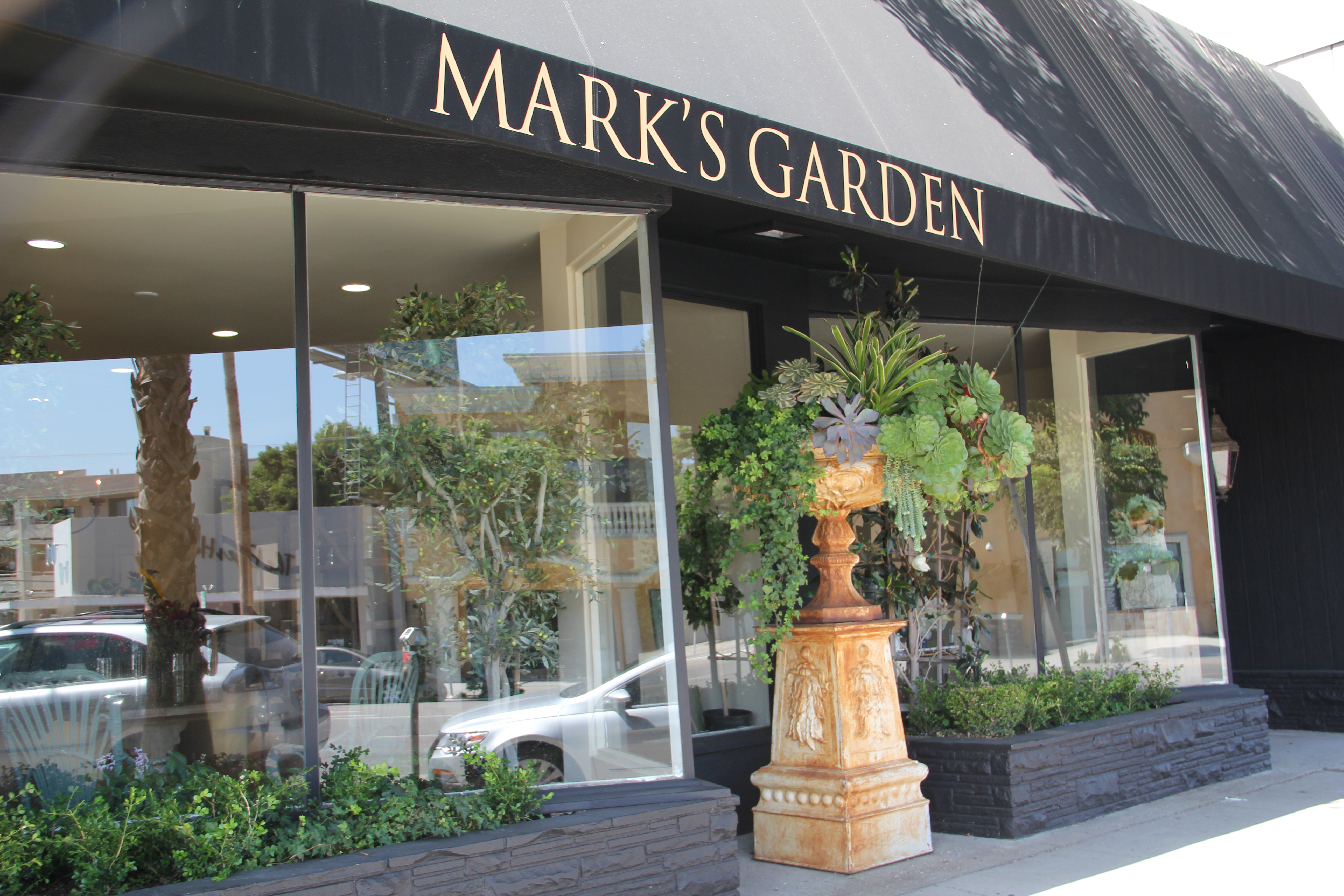 news from mark 39 s garden